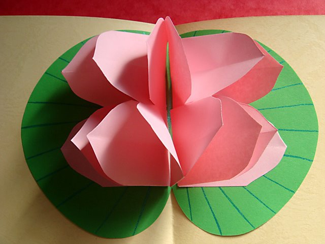 Lotus flower pop up card top view of the pop up lotus mightylinksfo