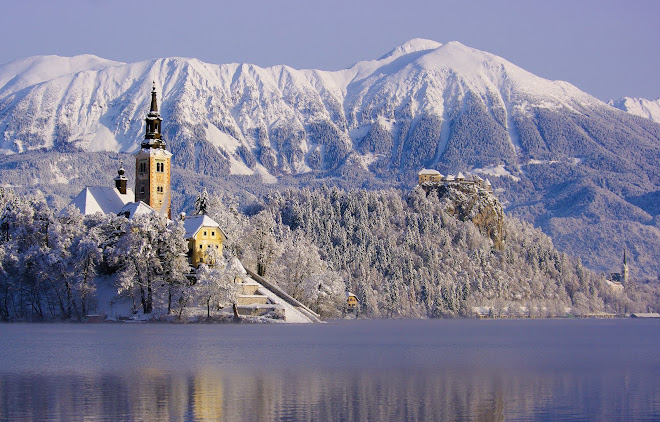 Bled  island and castle in winter