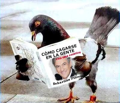 Humor gráfico contra el capitalismo, la globalización, la mass media occidental y los gobiernos entreguistas... - Página 5 Pinera-paloma
