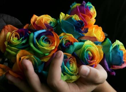 [rosas+nas+mãos.htm]