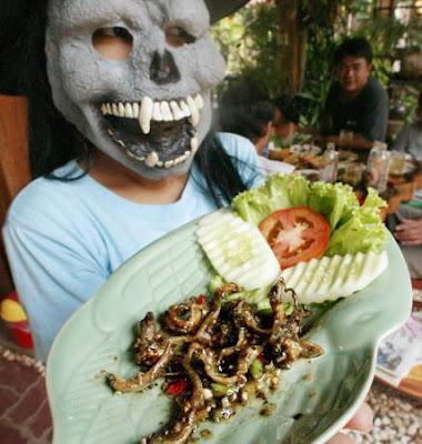 Los 10 platos más repugnantes y asquerosos del mundo [Atención, no apto para personas sensibles] Lagartija
