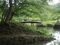 Japanese Garden - Nagoya Castle