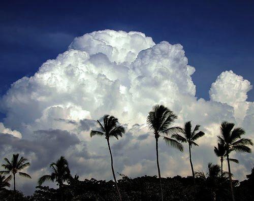 [Clouds2.jpg]