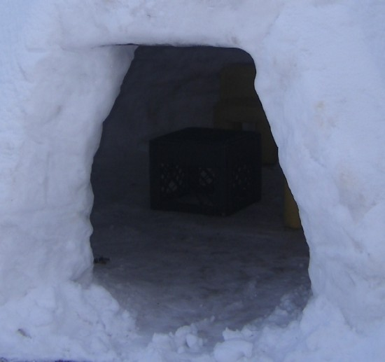 [Igloo2-B.JPG]
