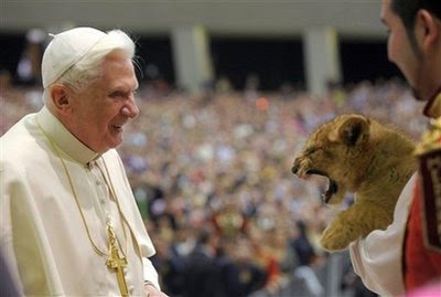 Animal: lion cub.