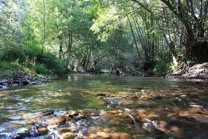 O Rio Tuela no Verão