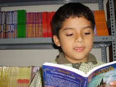 Cómo les gusta leer