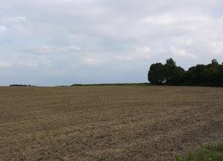 Bild 6: Keltenschanze Buchendorf von Norden