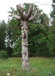 Bild 7: d'Artagnan im Eichelgarten
