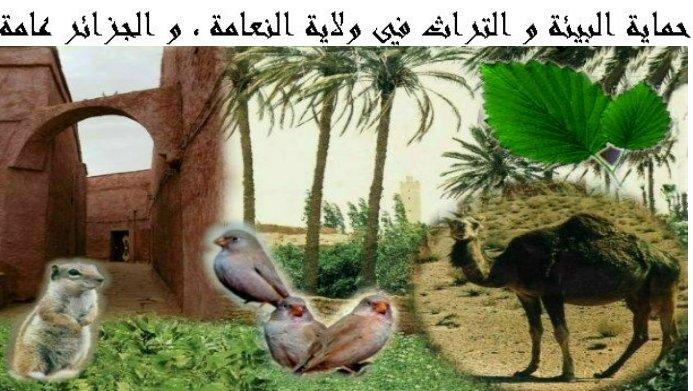 موقع عقون أحمد