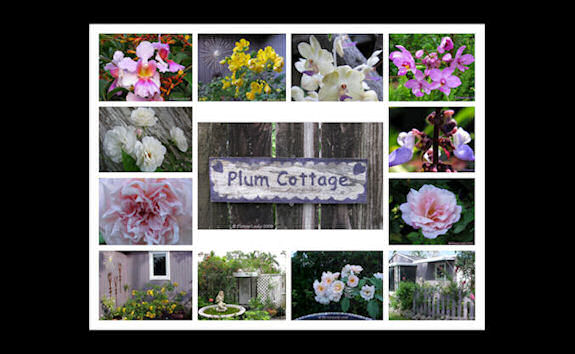 Plum Cottage Creations