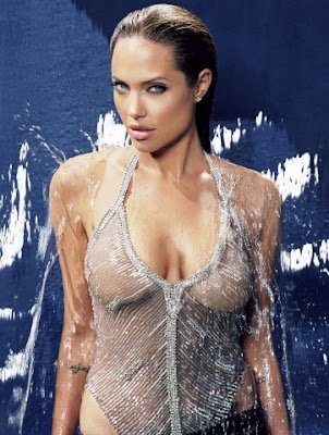 Hollywood Sexy Celebrities Angelina Jolie Biography & Picture