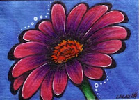 Daisy by Melissa Muir