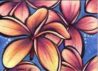 Plumeria by Melissa Muir