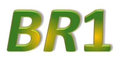 Portal BR1 | Brasil em 1º lugar