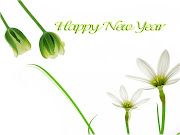 Dear All, Wish you a very very Happy New Year2011, wish you all the best .