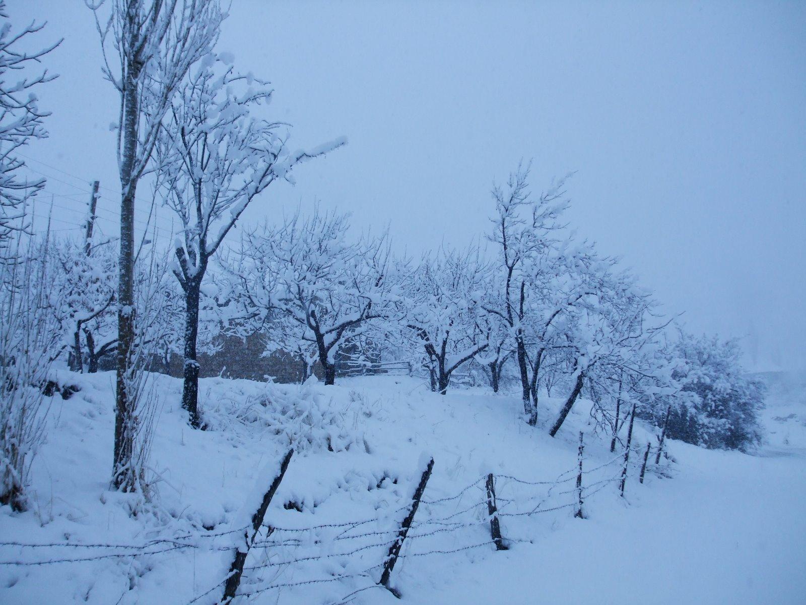 Köyümüzden kar manzaraları