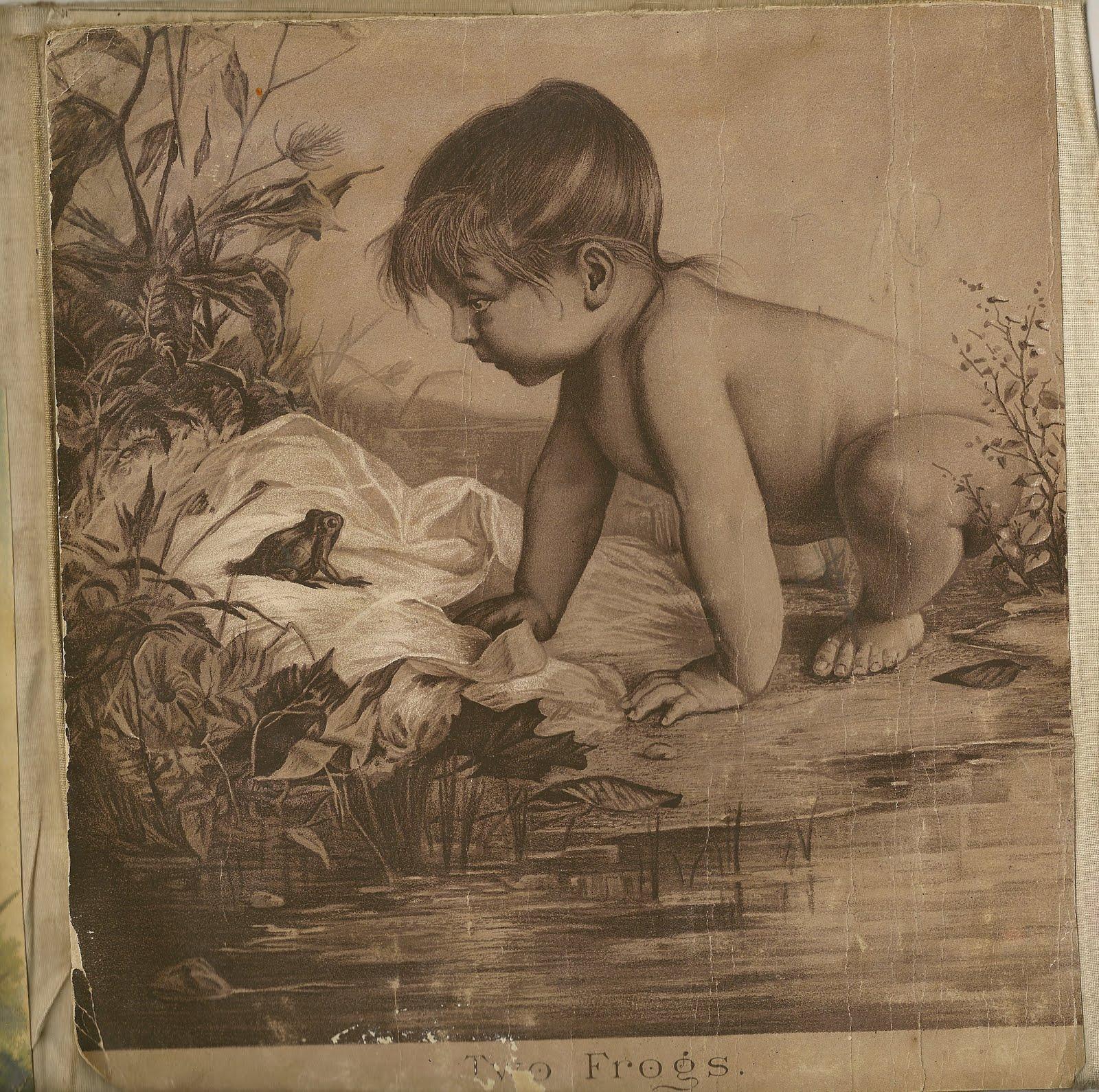 [babyfrog.JPG]