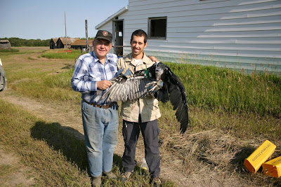 Bird Banding in Saskatchewan