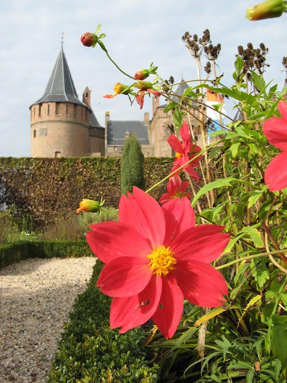Castillo de Muiden con flor
