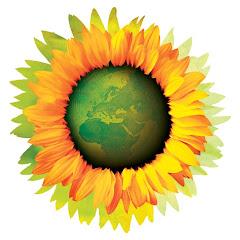 Blogue «Os Verdes» em Setúbal