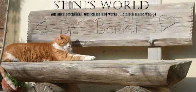 Stini's world