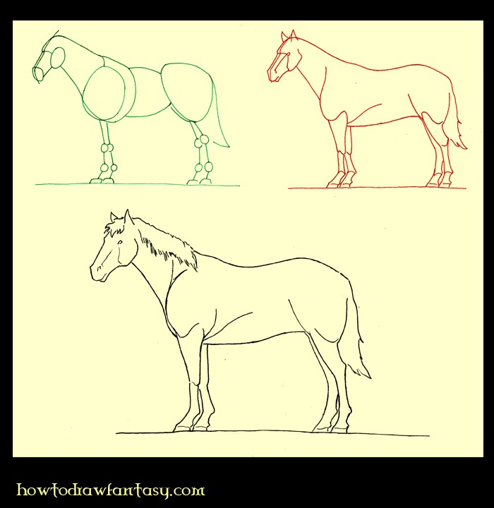 how to draw a step by step horse