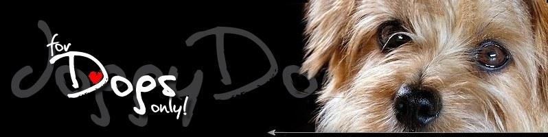 doggydogs