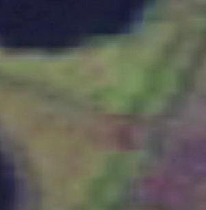 From this imagery (15 meter per pixels)