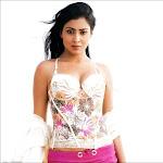 Hot Shreya Saran Maxim Magazine Photos