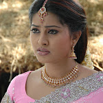 Sneha Hot Gallery2