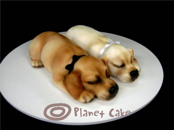 Realistic Cake Images : PLANET CAKE UPDATE: Planet Cake - The Best of 2010