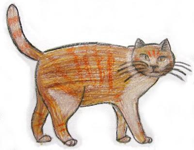desenho de um gato