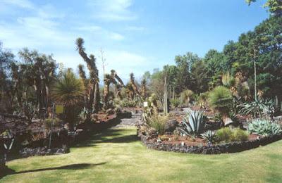 Blog de ariadna jardines botanicos de la ciudad de m xico for Jardin botanico horario