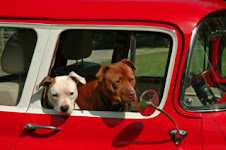 CHERRYHARLEY RESCUE PARTNERS TRANSPORTS
