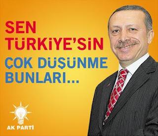 Çok düşünme Türkiye -Penguen