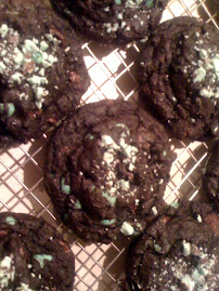 Dark Chocolate Mint Chip Cookies