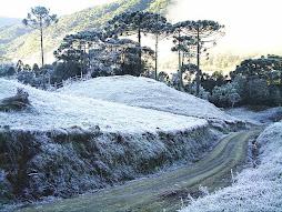 Terra Natal no inverno