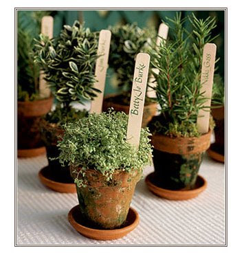 Adorable potted herb placecards photo via intimate weddings