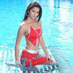 Telugu Cinema Life Style Photo Gallery...