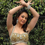 Sexy Indian Babe - Hot And Spicy Actress Preeti Jhangiani - Exclusive  Hq Photos Collection...