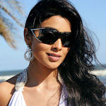 Sexy Indian Babe Shriya Saran From The Film Pistha   Exclusive Hq  Photo Gallery...