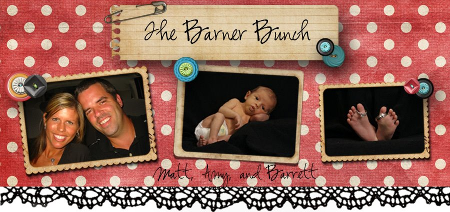 The Barner Bunch