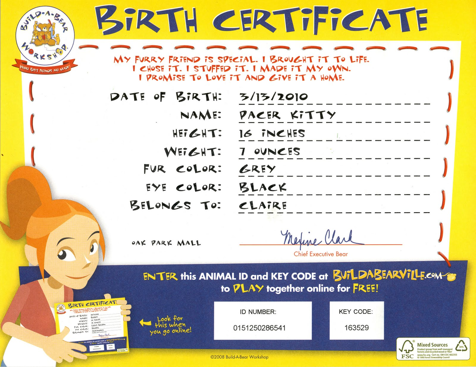 girl birth certificate template – Naming Certificates Free Templates