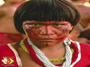 . à América havia aproximadamente 100 milhões de índios no continente.