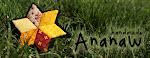 Blog de Ananaw!