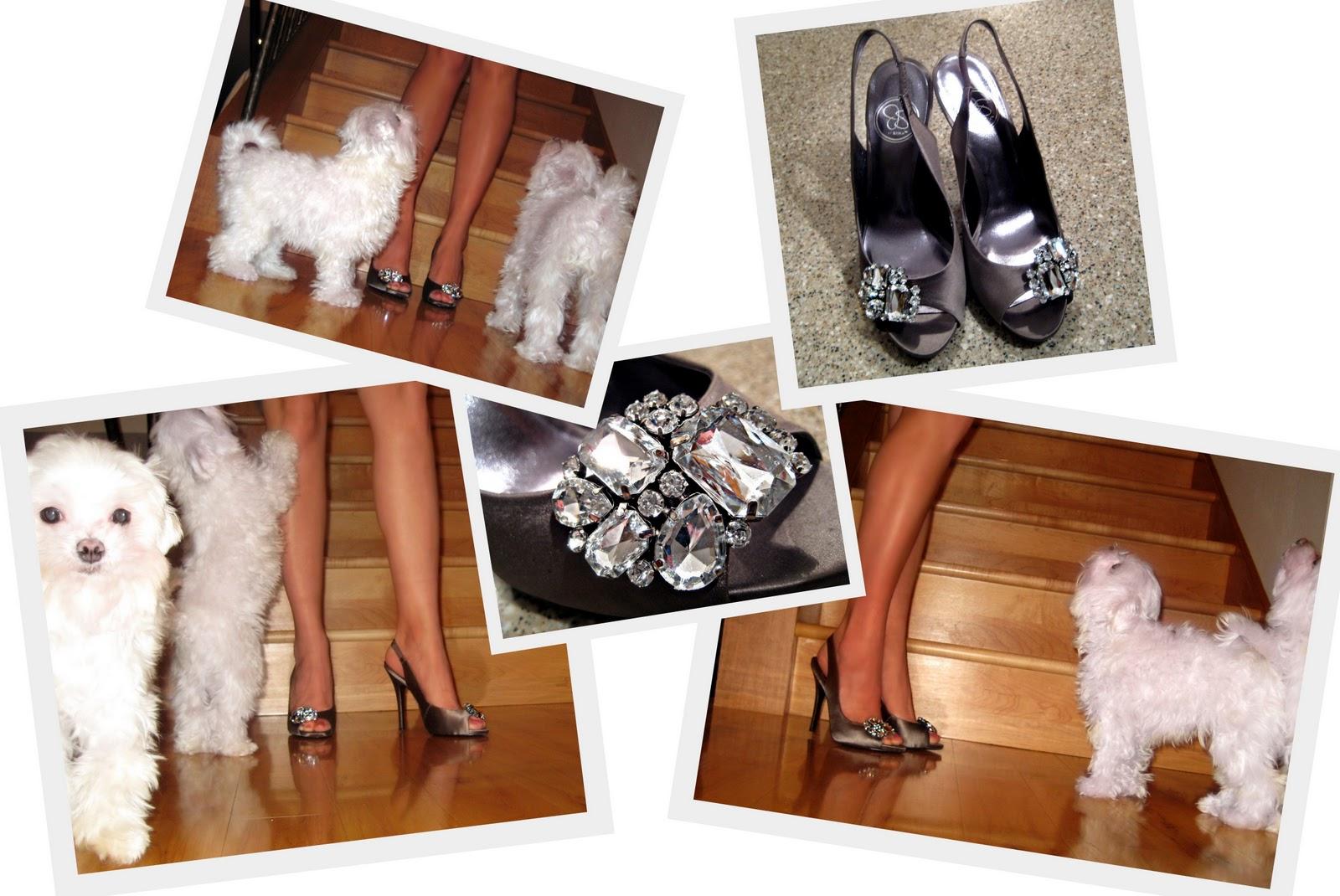 http://2.bp.blogspot.com/_FhopQJCeVu8/TUzClTUWiwI/AAAAAAAACo4/KSTLdHx9qMc/s1600/2011-01-21+Jessica+Simpson+Shoes.jpg