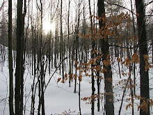 Frank Bowick&#39;s photo that inspired the cover for In Winter&#39;s Grip