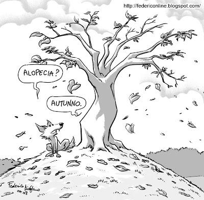 autunno albero e volpe