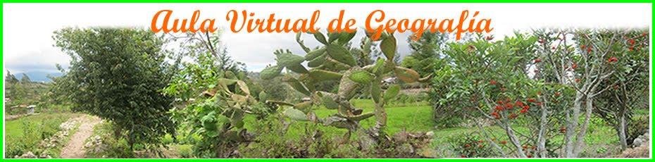 Aula Virtual de Geografía.
